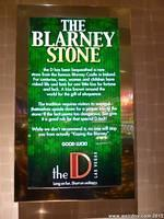 The Blarney Stone at The D