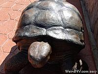Large turtles stand in each corner of the driveway.