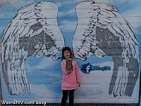 Wings behind Buffalo Exchange