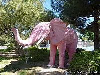 pinkelephant12
