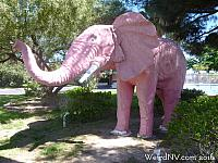 pinkelephant13